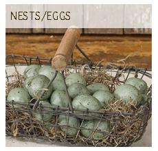 Nests/Eggs
